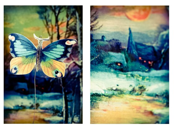 butterfly sunset-2