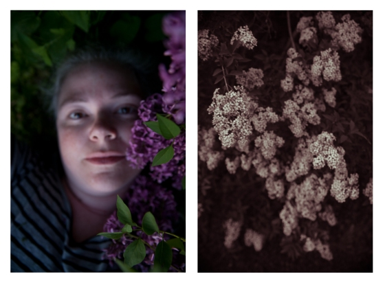 in lilacs-2