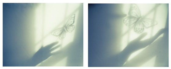 butterflyghost-3