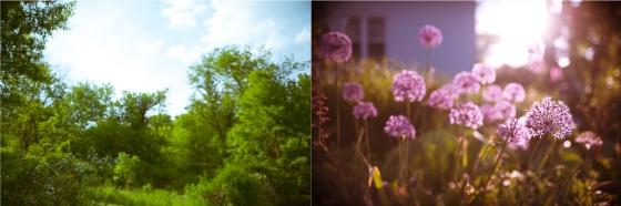 summercolors-2